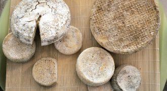 """Chiacchiere in bottega – Azienda Agricola """"La Cascinassa"""""""