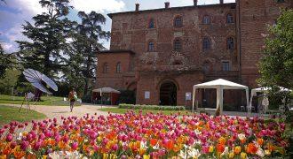 1/04-1/05/2017: Messer Tulipano (Castello di Pralormo)