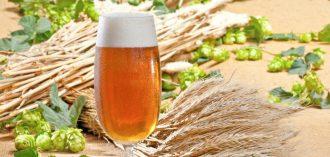 Breweries & Pubs