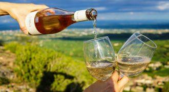 3-4/09/2018: Incoming buyer esteri settore vitivinicolo (Alba, Cn)