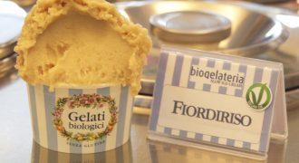 New Ice-cream for everyone: no milk, no eggs, no saccharose