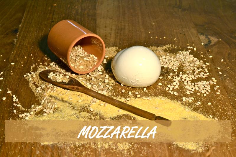 degustazione mozzarella
