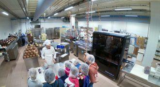 Ziccat: visite al laboratorio del cioccolato (Torino)